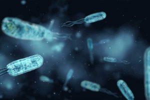disease-microscopic